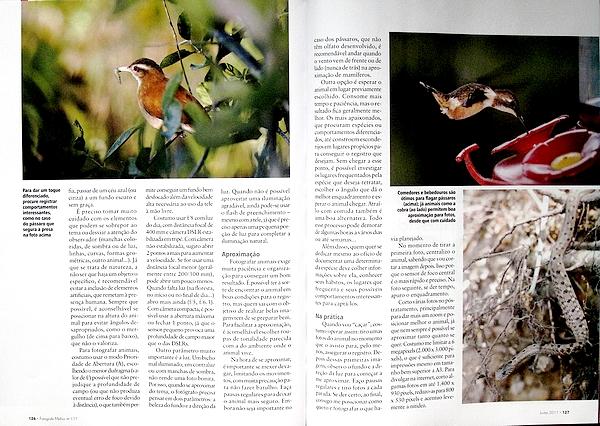 Fotografe Melhor - Lição de casa: Dicas para fotos de animais silvestres